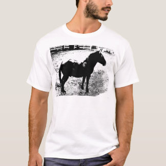 Profile of Mule in Black and White T-Shirt