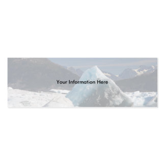 profile or business card, seascape pack of skinny business cards
