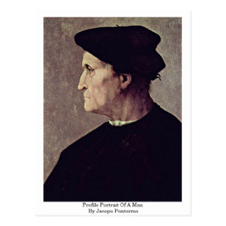 Profile Portrait Of A Man By Jacopo Pontormo Post Card