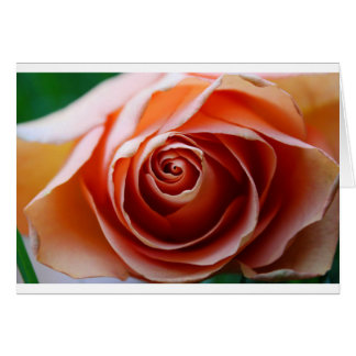 Profound Love Card