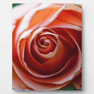 Profound Love Photo Plaques