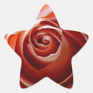 Profound Love Star Sticker
