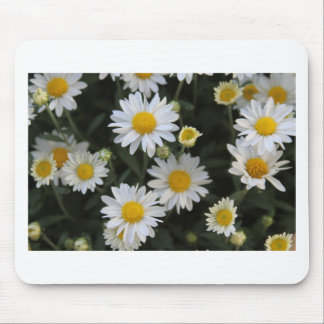 Profusion Of White Daisy Mums Mouse Pad