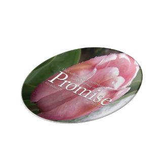 Promise Porcelain Collectors Plate Porcelain Plates