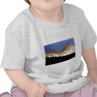 Promote rural tourism t-shirts