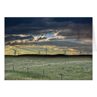 Pronghorn Antelope with Windmills at Sunset Card