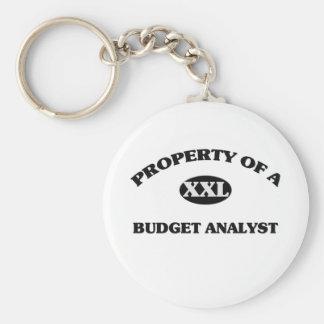 Property of a BUDGET ANALYST Keychain