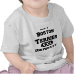 Property of Boston Terrier University T Shirts