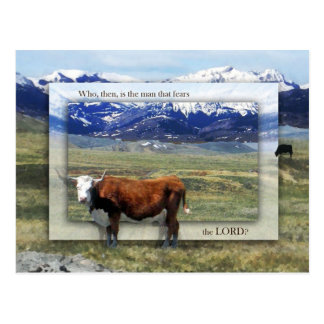 Prosperity and Inheritance Postcard