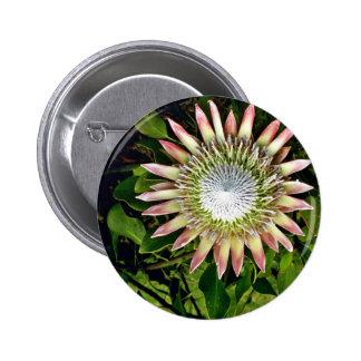 Protea Bloom - Maui 6 Cm Round Badge