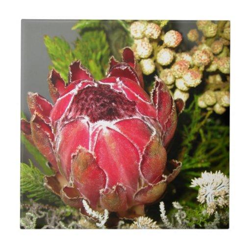 Protea Bouquet Ceramic Tile