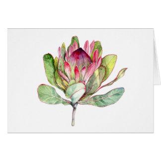 Protea Flower Card