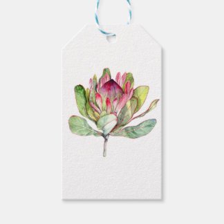 Protea Flower Gift Tags