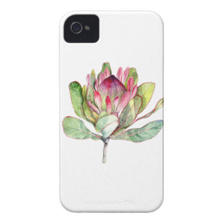 Protea Flower iPhone 4 Case-Mate Case