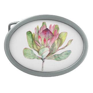 Protea Flower Oval Belt Buckles