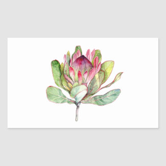 Protea Flower Rectangular Sticker