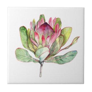 Protea Flower Tile