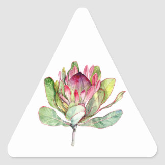 Protea Flower Triangle Sticker