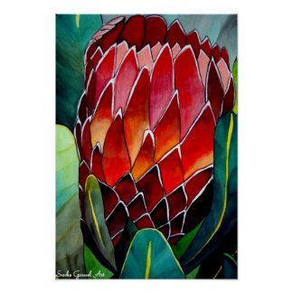Protea flower watercolour original art painting poster