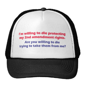PROTECT MY 2ND AMENDMENT RIGHTS HAT
