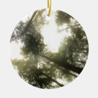 Protect Our Forests Ceramic Ornament