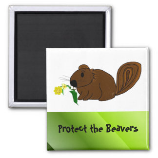 Protect the Beavers Square Magnet