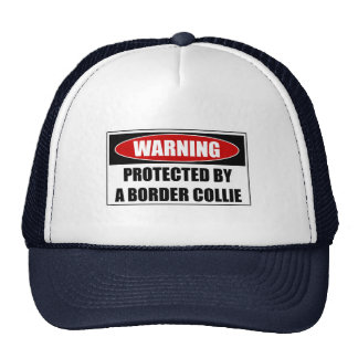 Protected By A Border Collie Cap