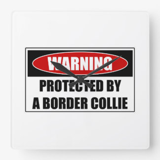 Protected By A Border Collie Square Wall Clock