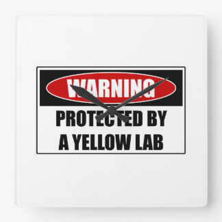 Protected By A Yellow Lab Square Wall Clock