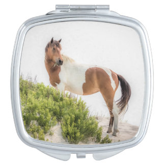 Protector of the Dunes Compact Mirror