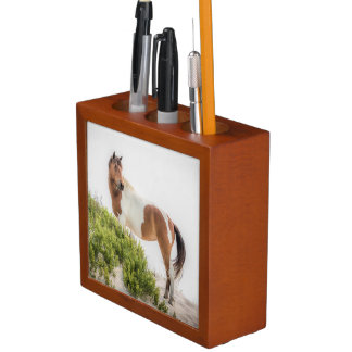 Protector of the Dunes Desk Organizer