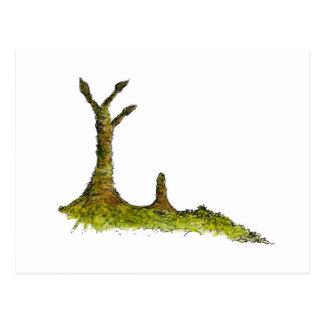 Prototaxites Lichens Postcard