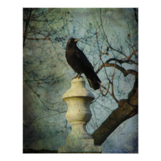 Proud American Crow Poster