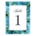 Proud as a Peacock Table Number Set 1112 Postcard