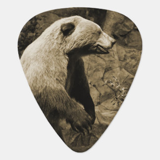 Proud Bear Guitar Pick