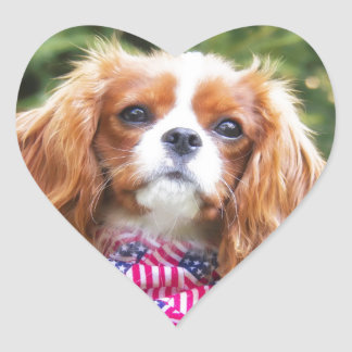 Proud Cavalier King Charles Spaniel Puppy Heart Sticker