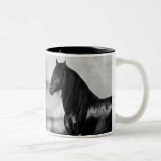 Proud Friesian black stallion horse Mug