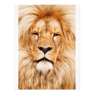 Proud Lion Portrait Flyer