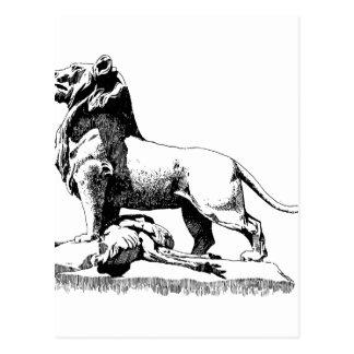 Proud Lion Postcard