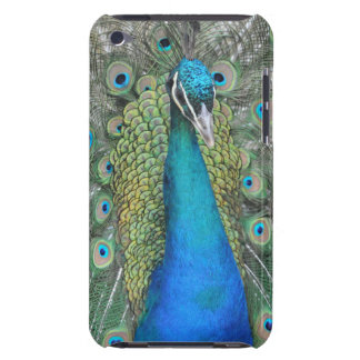 Proud Peacock Case-Mate iPod Touch Case