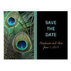 Proud Peacock Save The Date Postcards