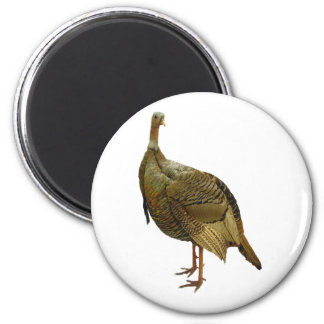 Proud Wild Turkey 6 Cm Round Magnet