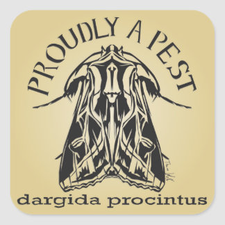 Proudly a Pest, dargida procintus Square Sticker