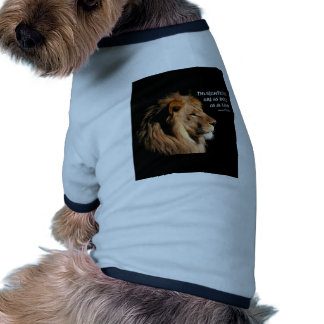 Proverbs 28:1 dog shirt