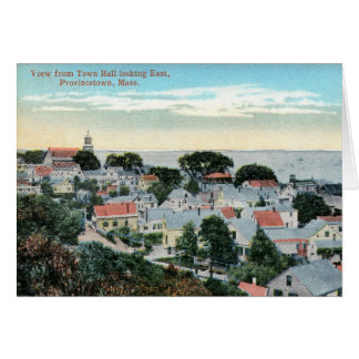 Provincetown, Massachusetts, Bird's Eye, Vintage Card