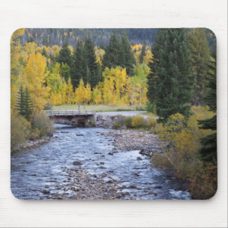 Provo River and aspen trees 8 Mouse Pad