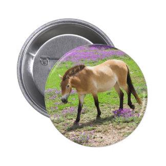 Przewalski Horse 6 Cm Round Badge