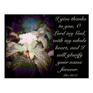 Psa 86:12 postcard
