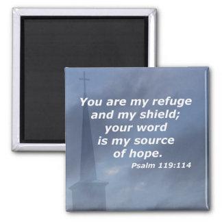 Psalm 119:114 magnet
