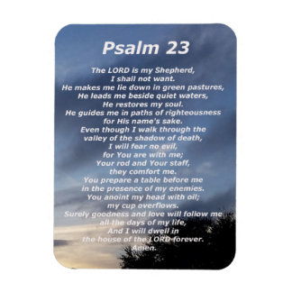 Psalm 23  (3) rectangular photo magnet